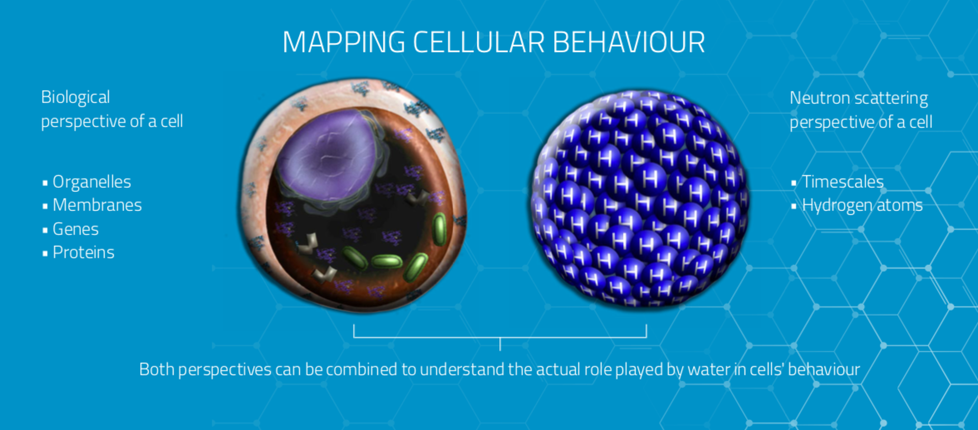 MIRACLES mapping cellular beahviour